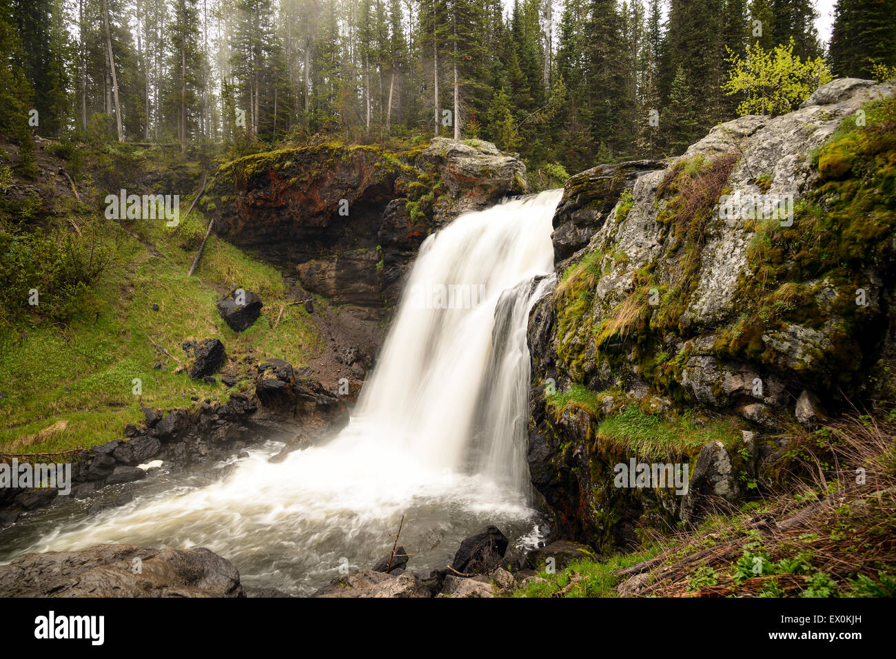 Beautiful Moose Falls in evening light at Yellowstone National Park - Wyoming. - Stock Image