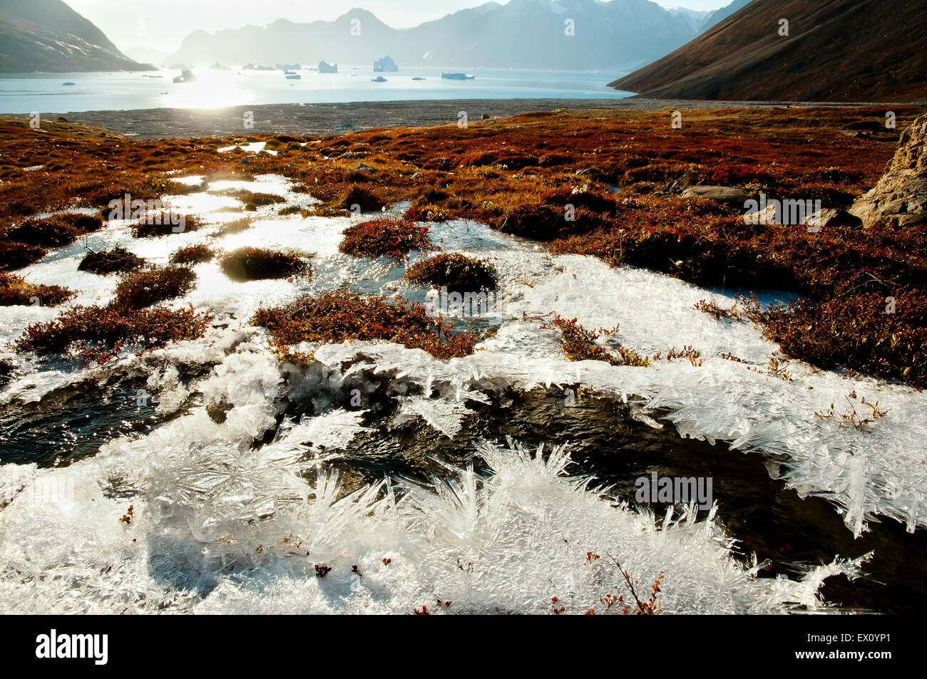 Sun Glare Frost - Greenland - Stock Image