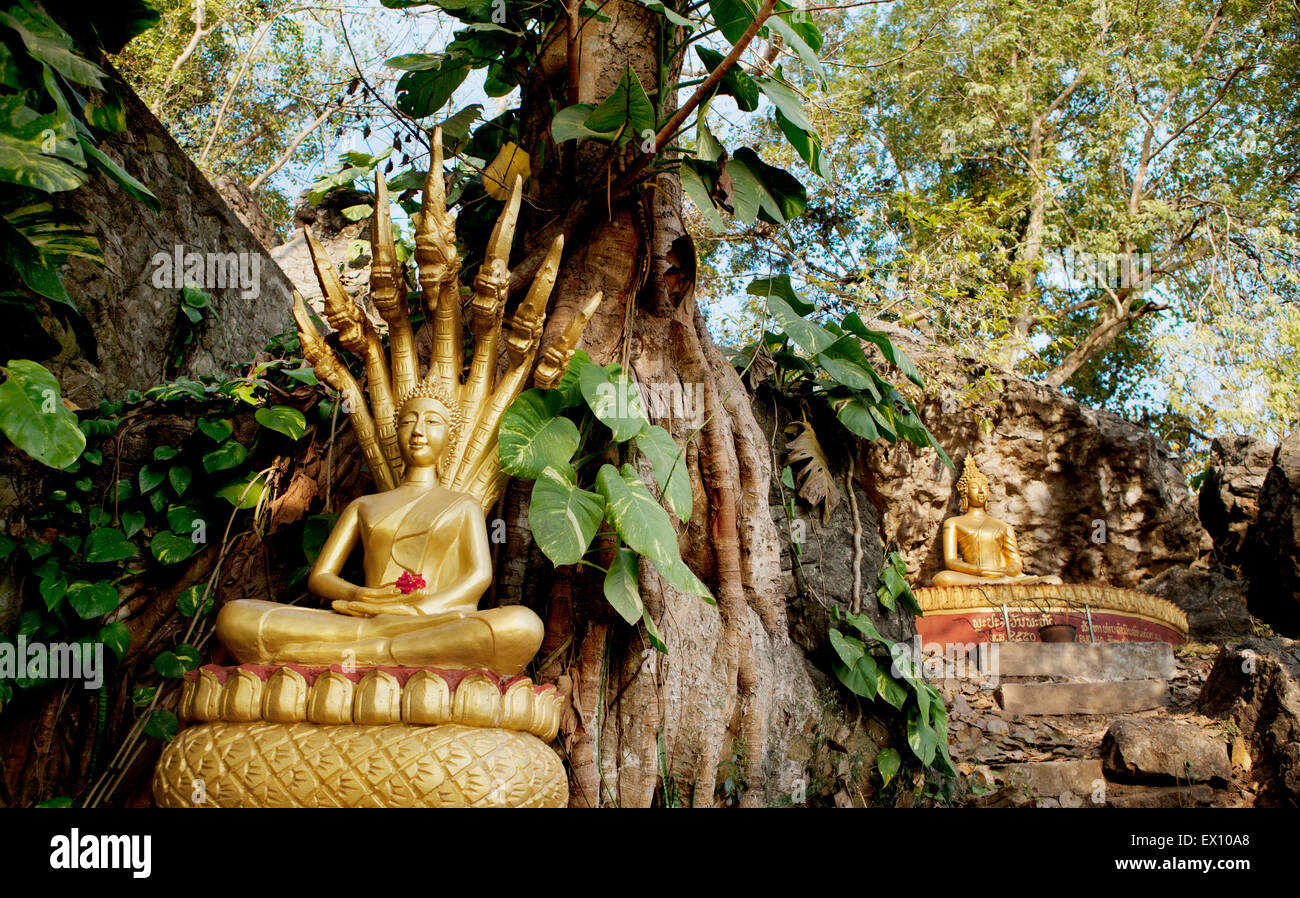 These golden statues on the Ban Khamyong side of Mount. Phou Si. depict the 7 positions of Buddha. - Stock Image