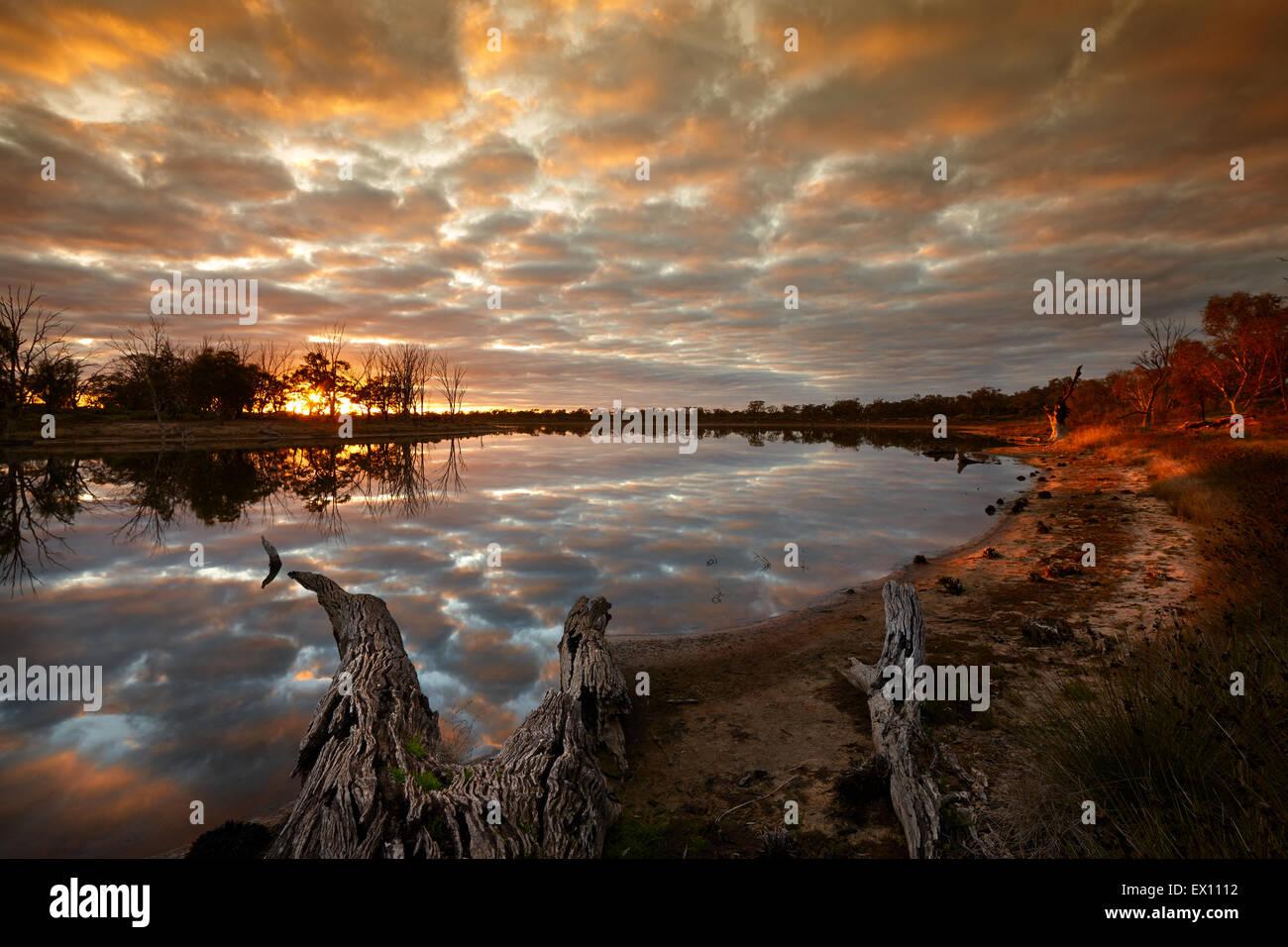 First light on Billabong, beside Murray River near Merbein, Victoria, Australia. - Stock Image
