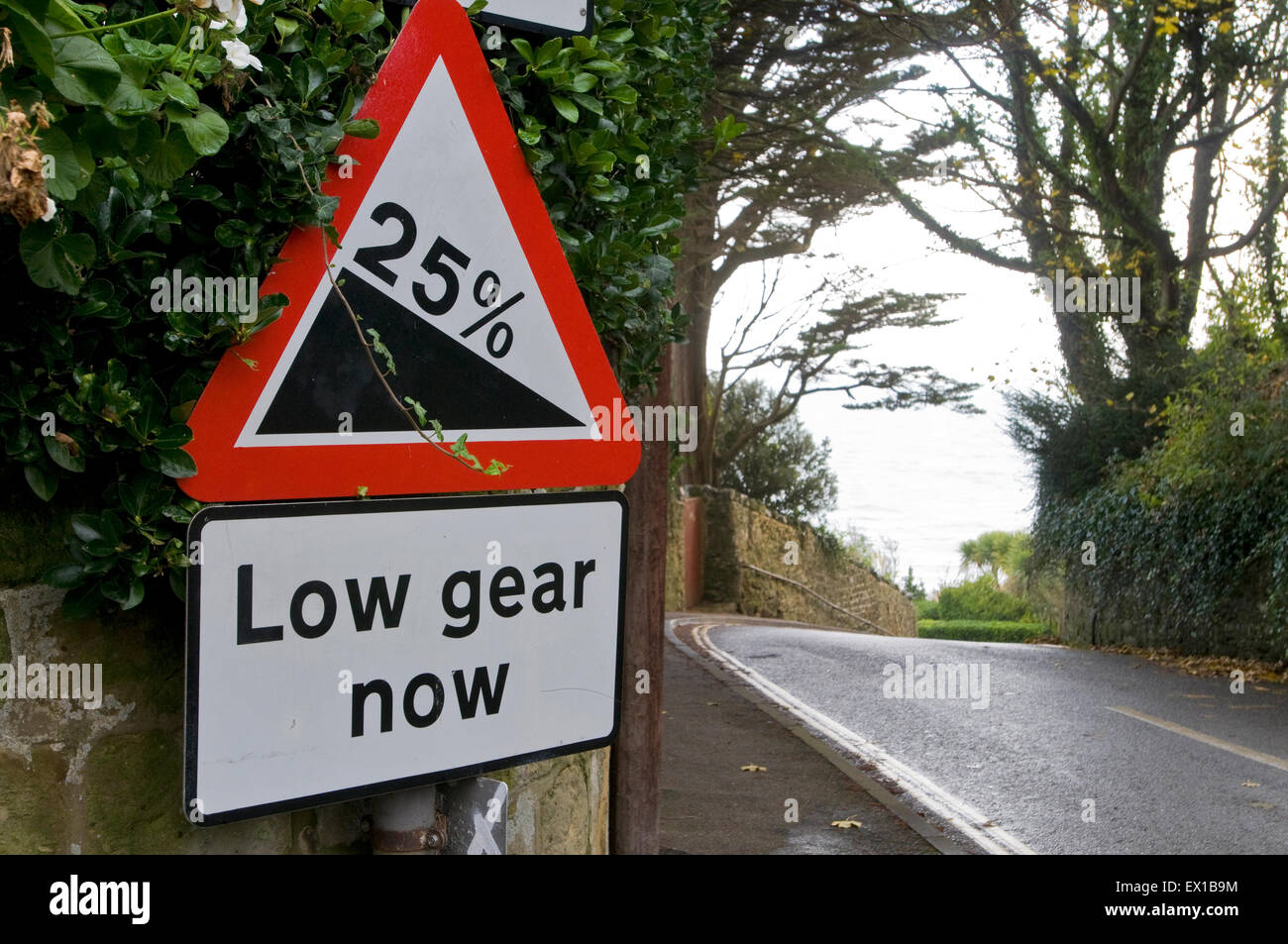 Traffic sign 25% steep hill downwards and low gear now text, Isle of wight,  England UK Europe - Stock Image