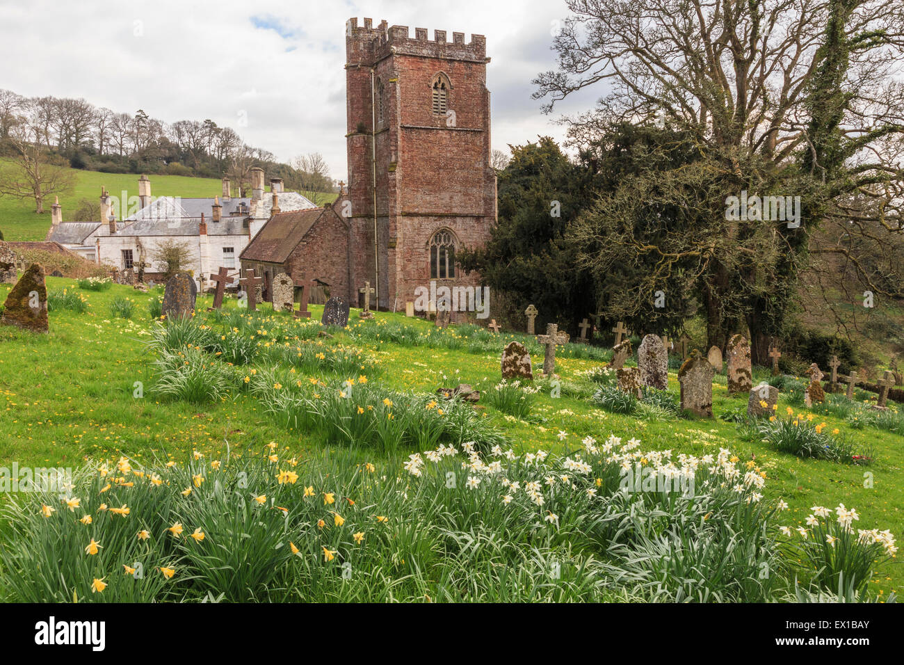 St Pancras church and church yard, West Bagborough, during spring. Manor house in background. Stock Photo