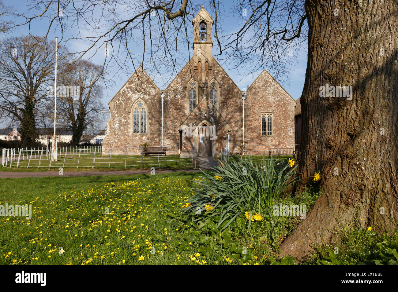 St Peter's Church of England church in Williton during springtime. Stock Photo