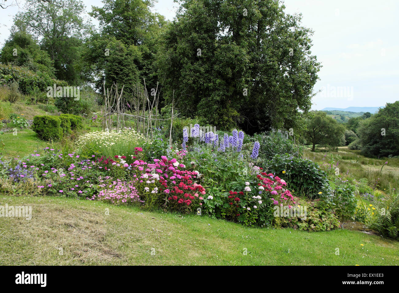 Rural garden herbaceous border with view of the countryside in Carmarthenshire  Wales UK  KATHY DEWITT - Stock Image