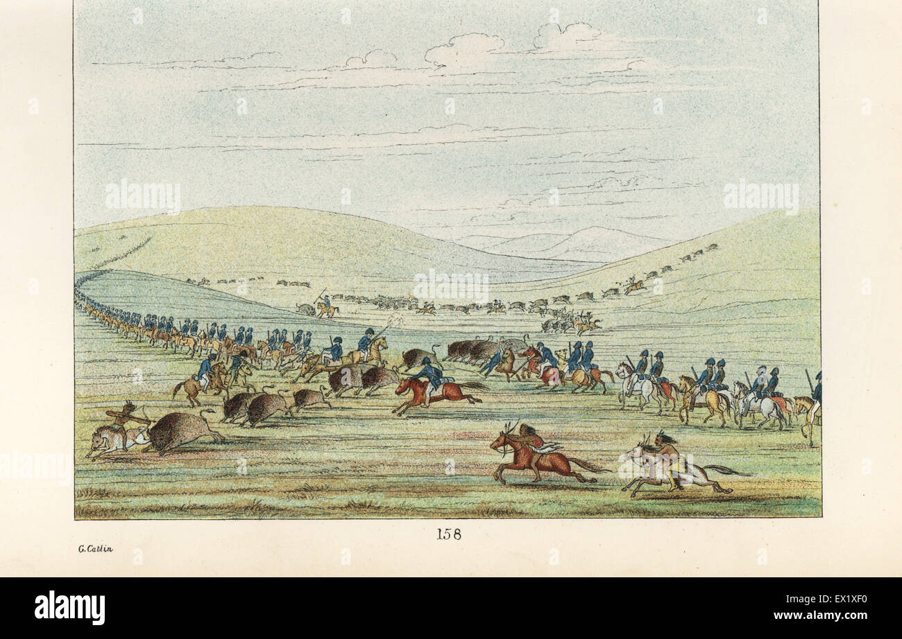 Native Americans and US cavalry at a buffalo hunt. Osage, Cherokee, Seneca, Delaware and Comanche hunting bison - Stock Image