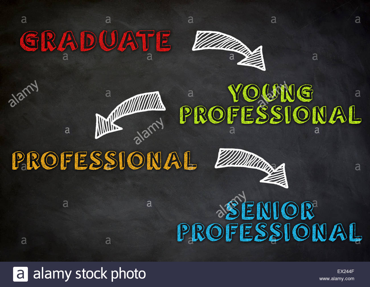 career steps from graduate to senior professional - Stock Image