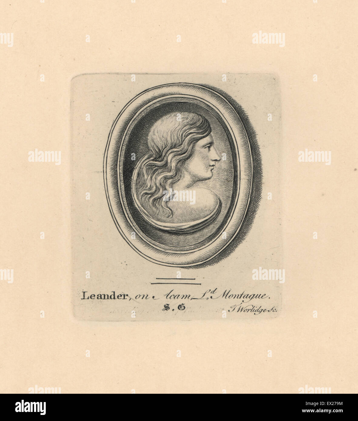 Portrait of Leander, youth and lover of Hero in Greek myth, on acam from Lord Montague's collection. Copperplate - Stock Image