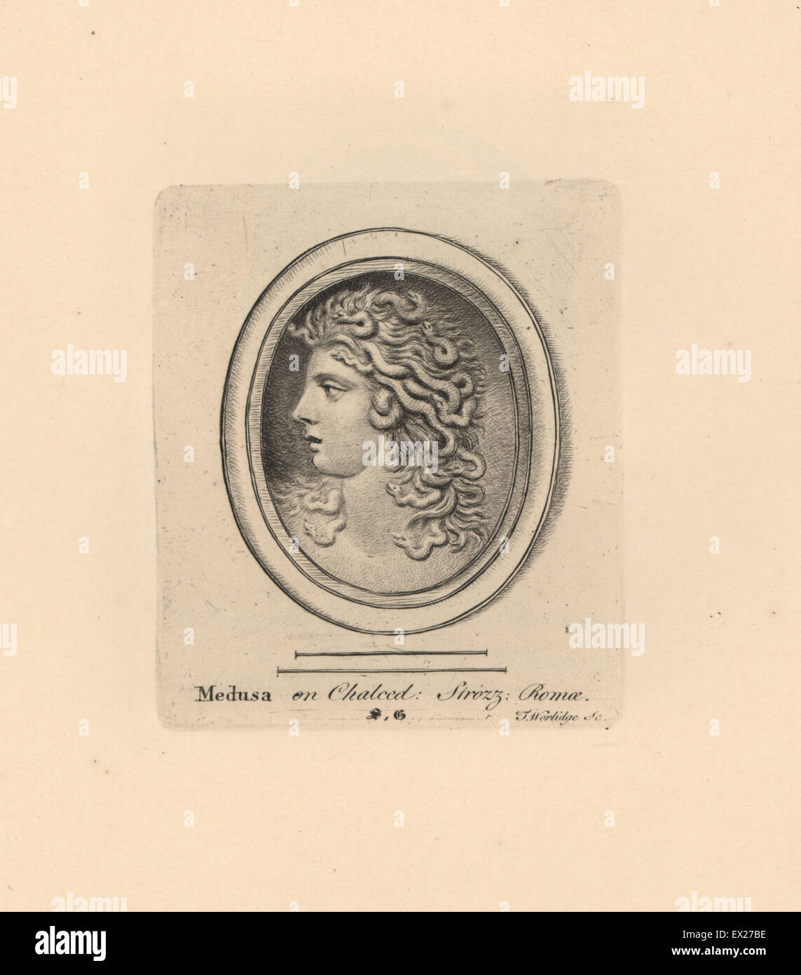 Portrait of the Gorgon Medusa, with head of snakes, Greek mythology, on chalcedony in the Strozzi collection in - Stock Image