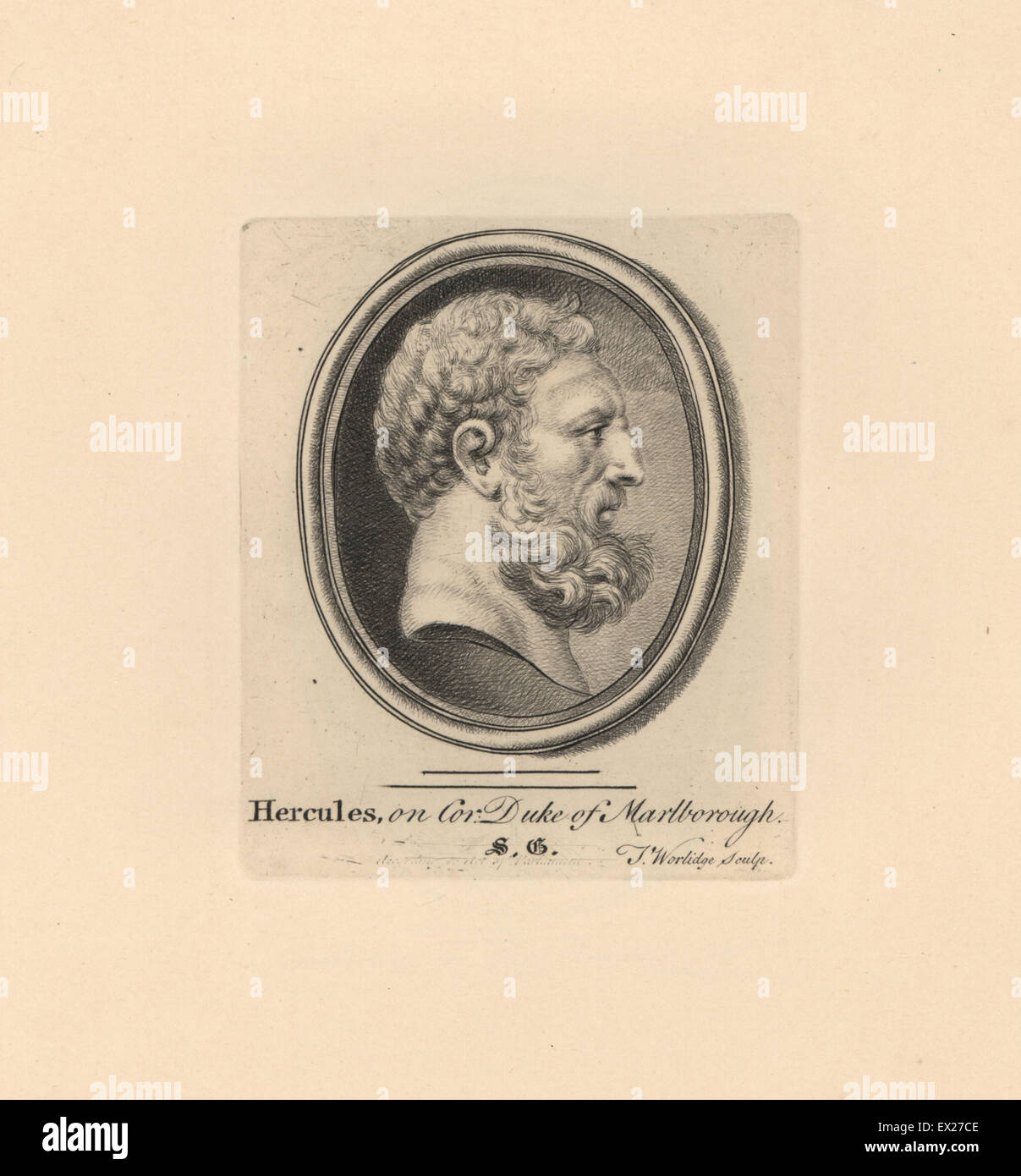 Portrait of Hercules, Greek mythical hero, on cornelian in the Duke of Marlborough's collection. Copperplate - Stock Image