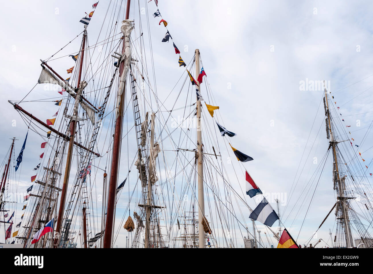 Masts and rigging from a number of Tall Ships - Stock Image
