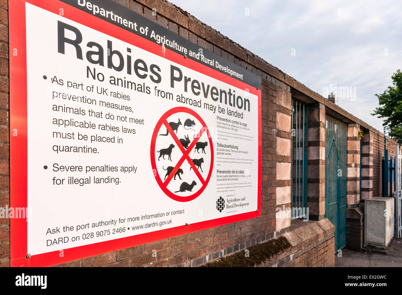 Sign warning people not to bring animals into the UK to prevent rabies - Stock Image