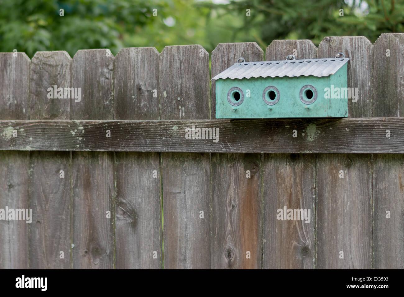 Turquoise Three Hole Birdhouse on Fence - Stock Image