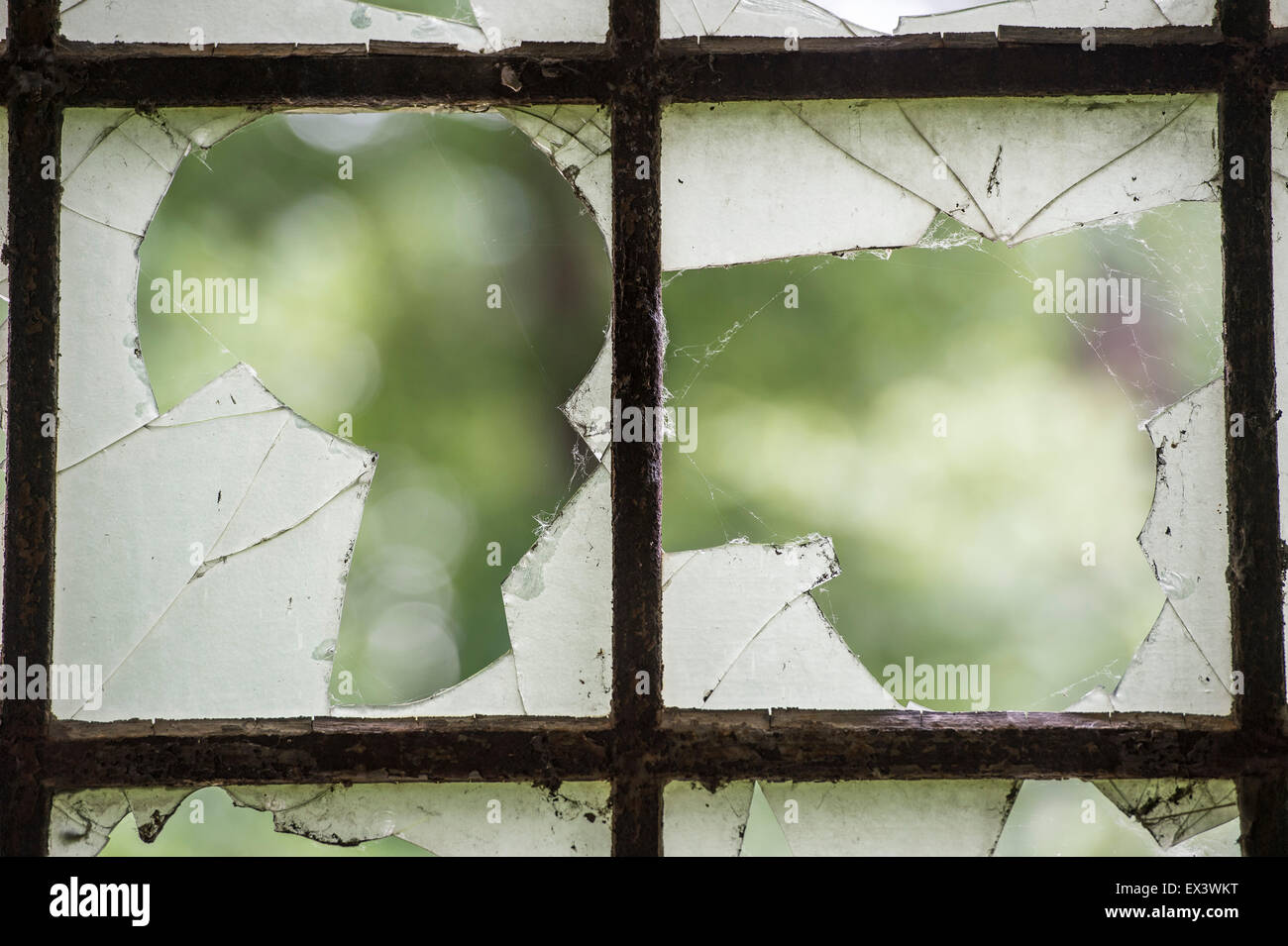 Broken glass windows - Stock Image