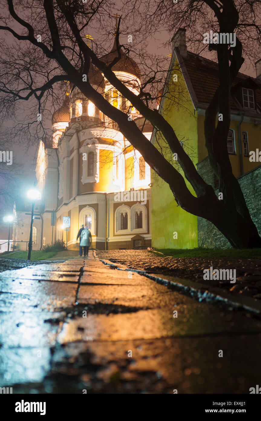 Alexander Nevsky Cathedral at night, Tallinn, Estonia - Stock Image