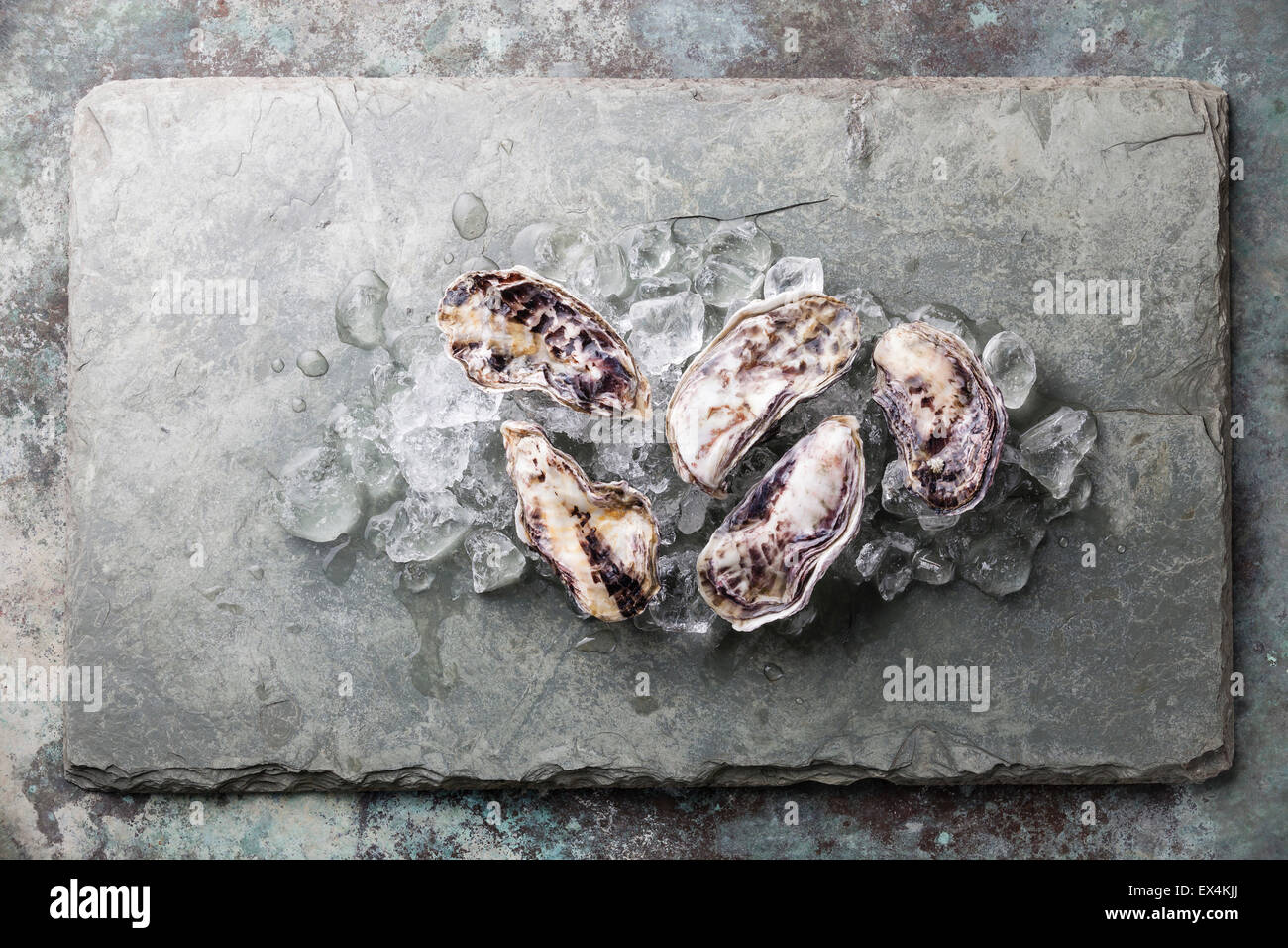 Five fresh raw Oysters on stone background with ice - Stock Image