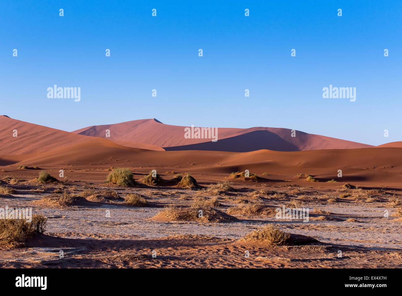 beautiful sunrise landscape of hidden Dead Vlei in Namib desert, best place of Namibia Stock Photo