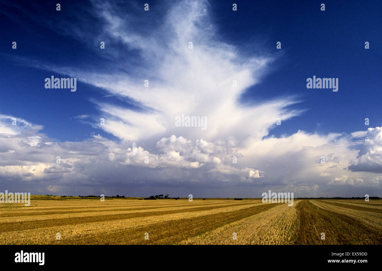 Clouds formation over late summer Lincolnshire stubble field. - Stock Image