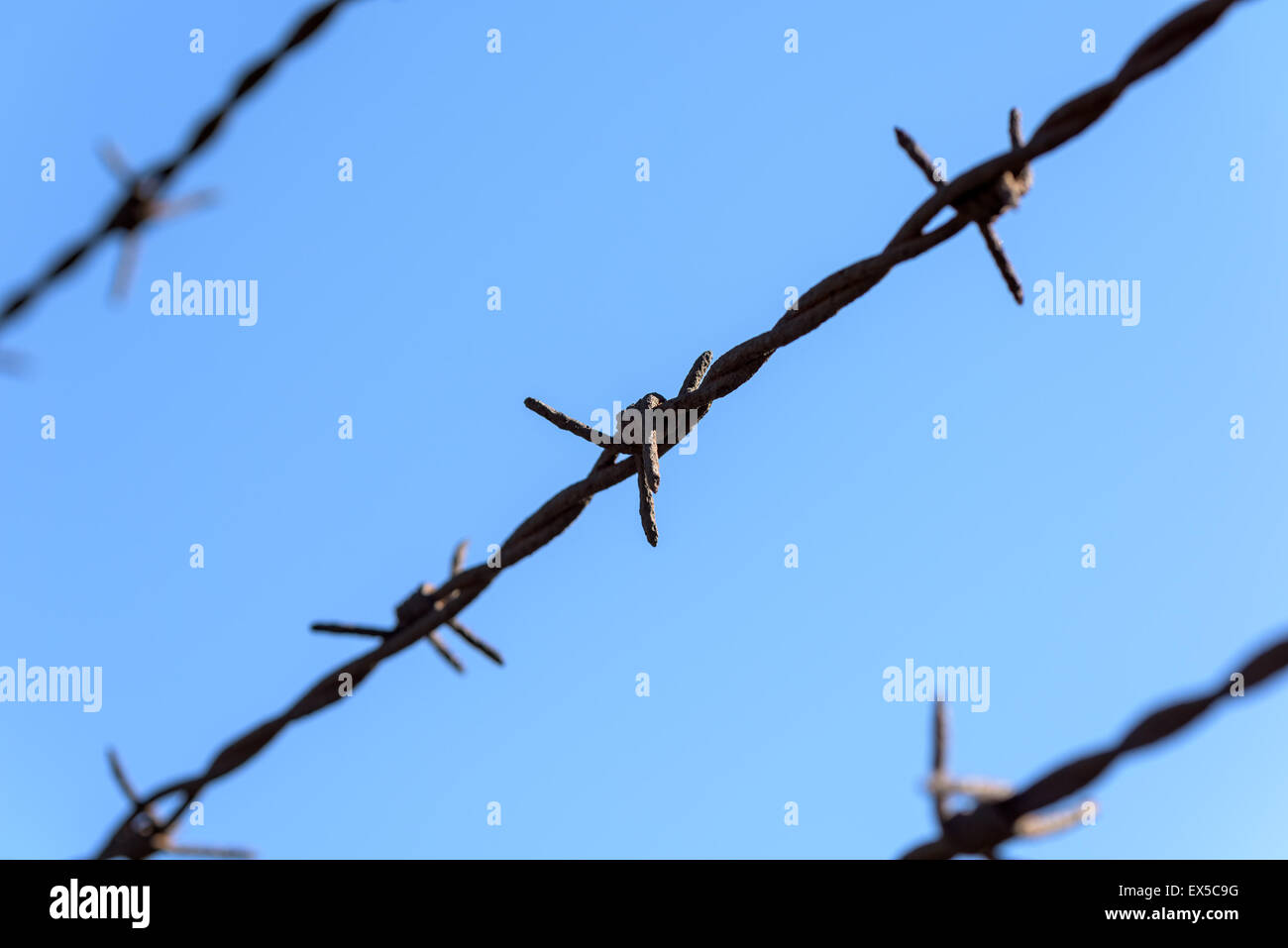 Prison Rusty Barbed Wire On Blue Sky - Stock Image