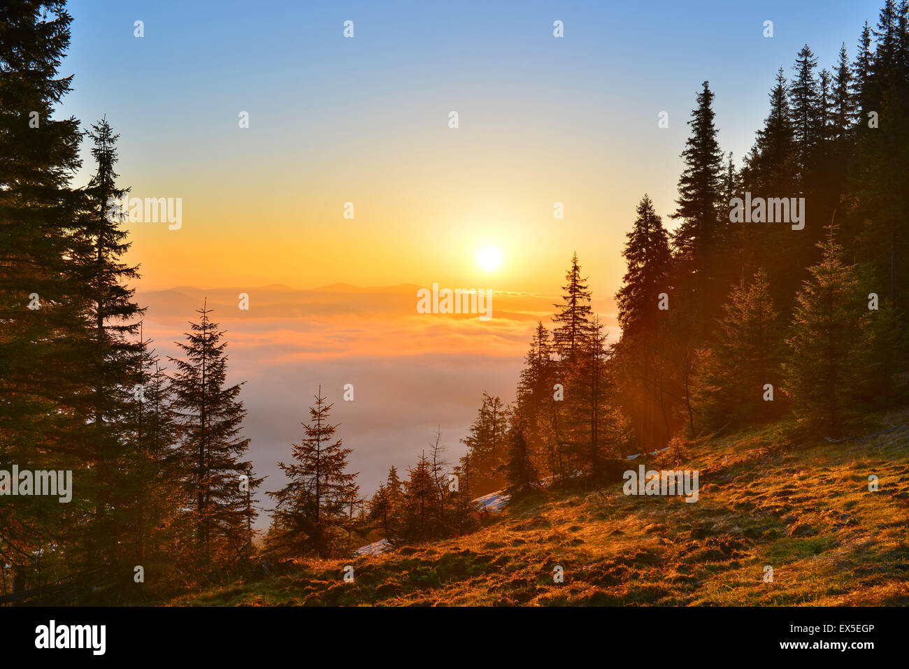 Rising sun above the spring highland. - Stock Image