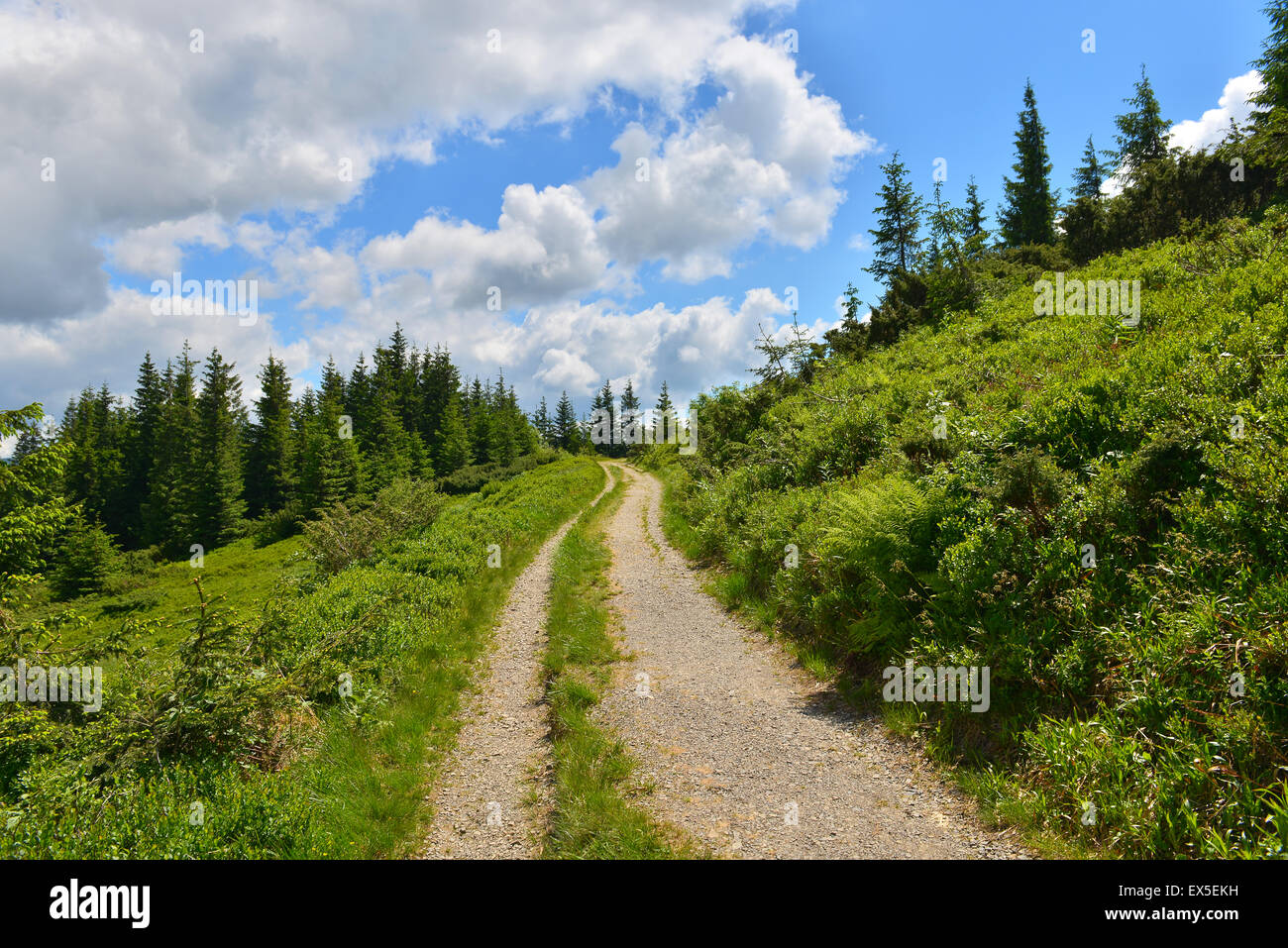 Touring path in summer mountains - Stock Image