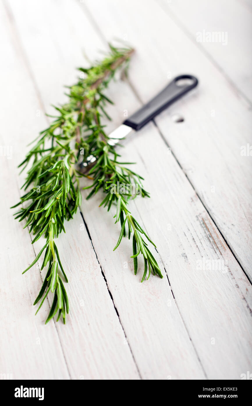 Rosemary branch and kitchen knife on rustic white wooden table, selective focus - Stock Image