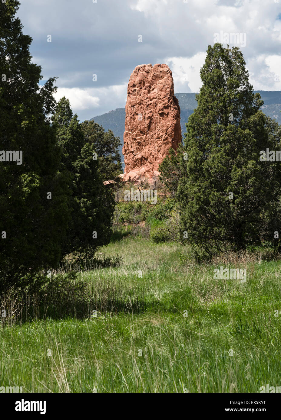 A red stone column surrounded by green trees, Garden of the Gods, Colorado Springs, Colorado, USA, North America - Stock Image