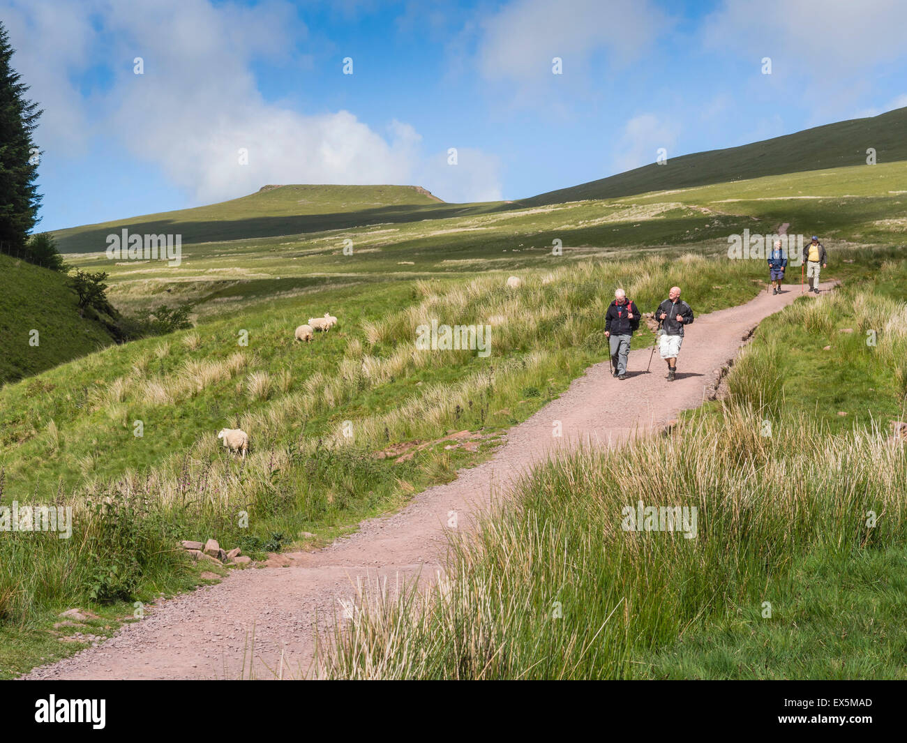 Walkers on Path from Corn Du and Pen y Fan Mountains to Pont ar Daf in The Brecon Beacons National Park, Powys, - Stock Image