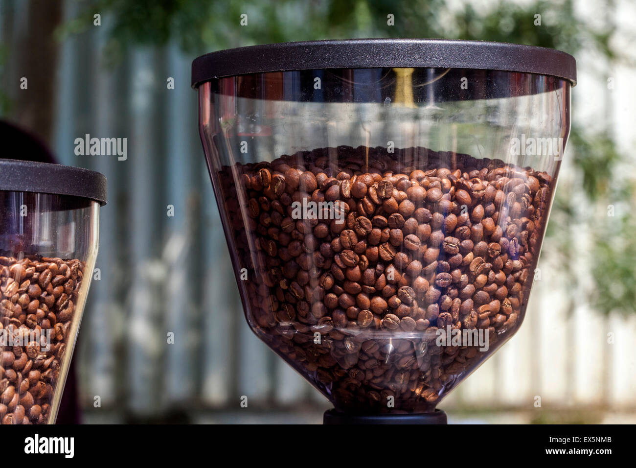 Coffee grinder,  roasted coffee beans, bean tank - Stock Image