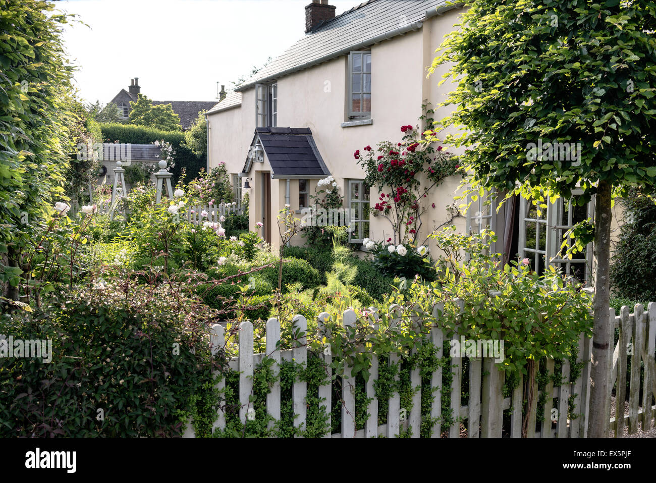Exterior facade of an English country cottage with picket fence and rose garden - Stock Image
