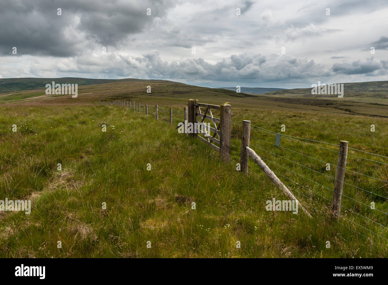 Watershed fence on Greenbank Fell Bowland - Stock Image
