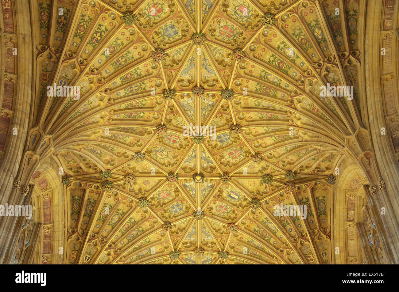 The ornately decorated Gothic fan vaulted ceiling of Sherborne Abbey with its colourful designs and symbols. Dorset, - Stock Image