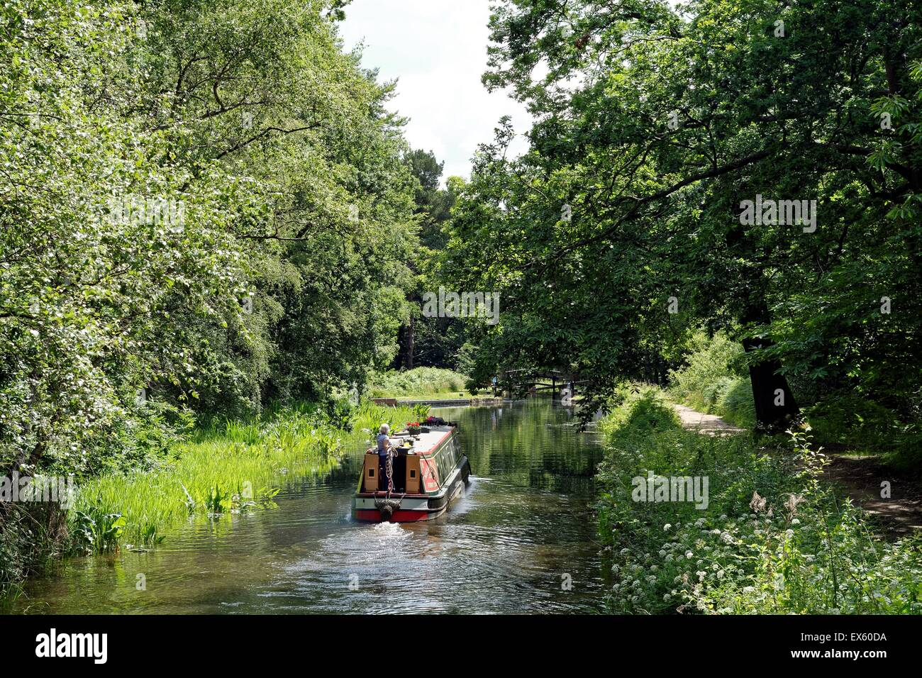 Narrow boat on the Basingstoke canal at Brookwood Surrey UK - Stock Image