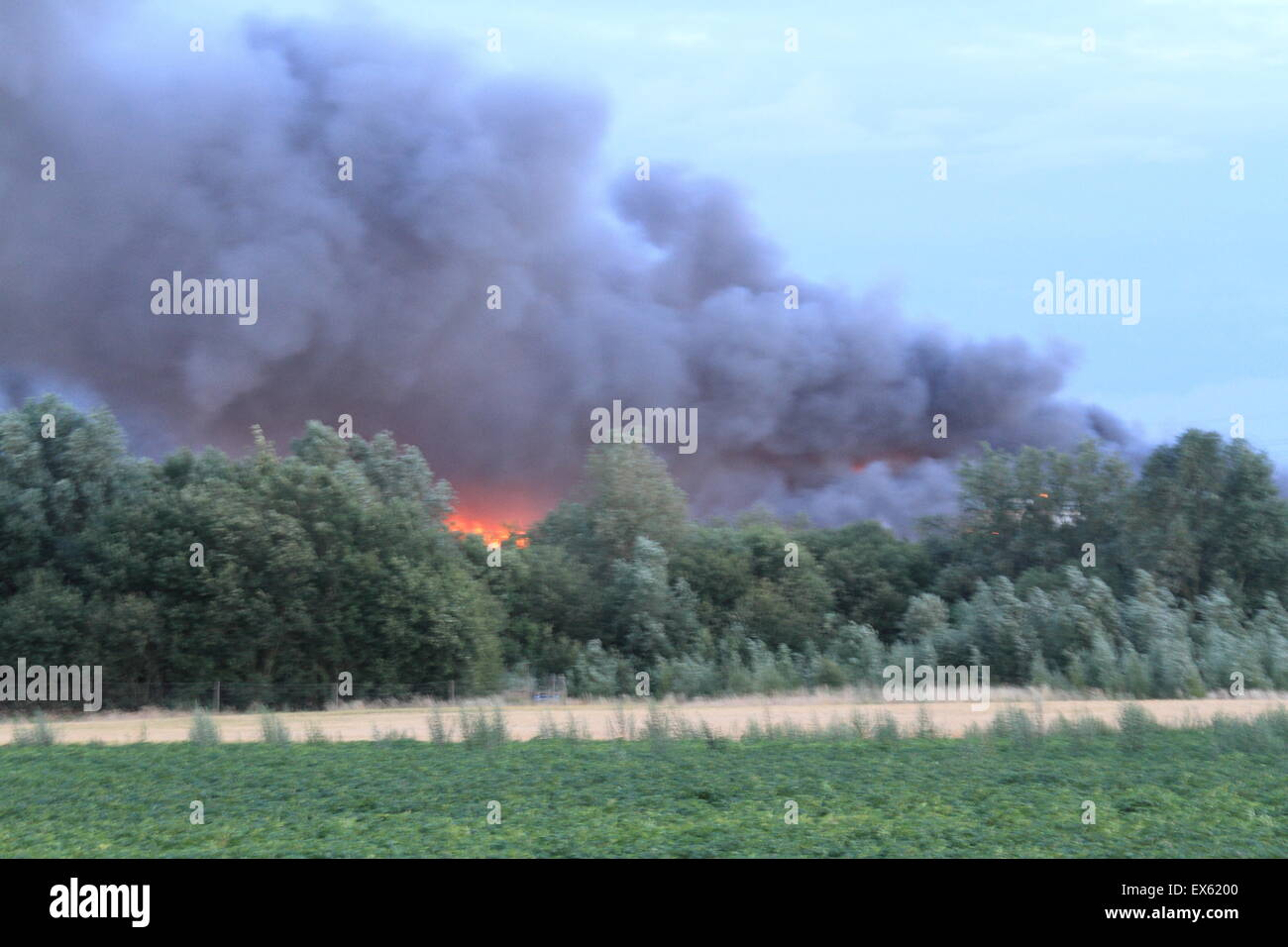 Rainham, London, UK. Tuesday 7th July 2015. Over 80 Firefighters tackle blaze in a pallet Yard in Rainham. 12 Fire Stock Photo