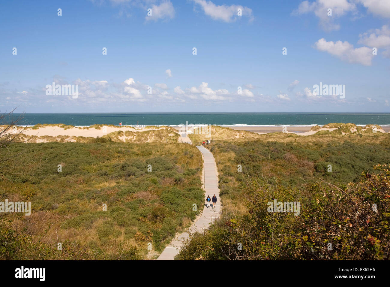 Europe, Netherlands, dunes and the beach between Oostkapelle and Vrouwenpolder on the peninsula Walcheren. - Stock Image