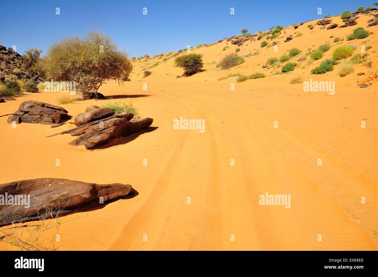 Tire tracks in the sand, route from Atar to Tidjikja, Adrar region, Mauritania - Stock Image