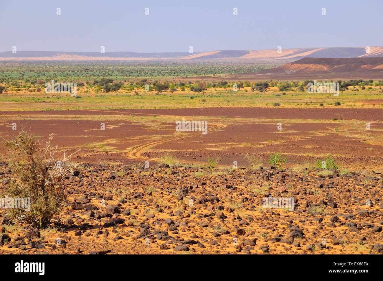 Desert landscape with tire tracks, route from Atar to Tidjikja, Adrar region, Mauritania - Stock Image