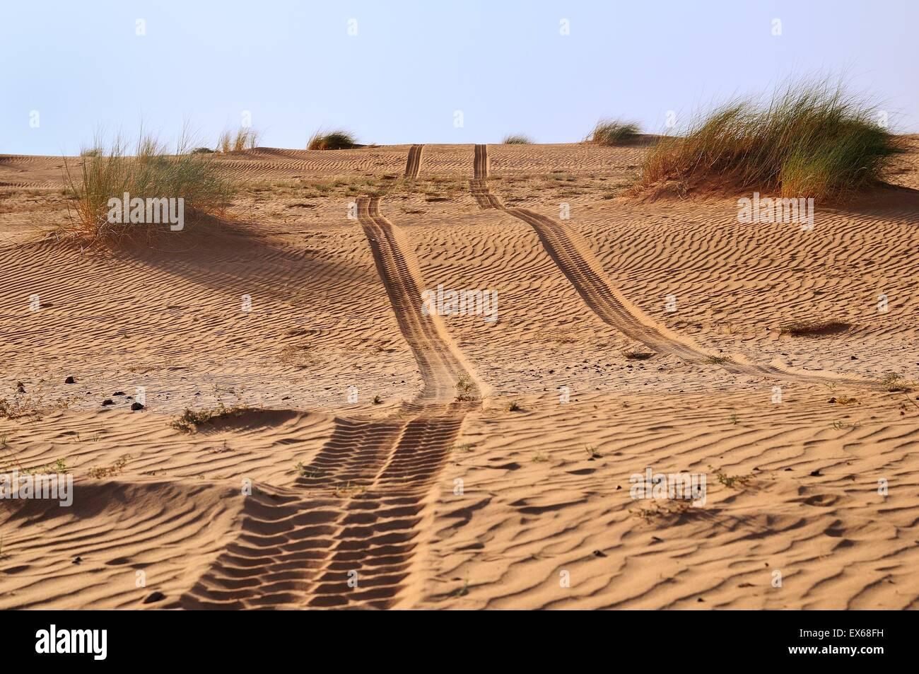 Tire tracks in the desert sand, route from Atar to Tidjikja, Adrar region, Mauritania - Stock Image