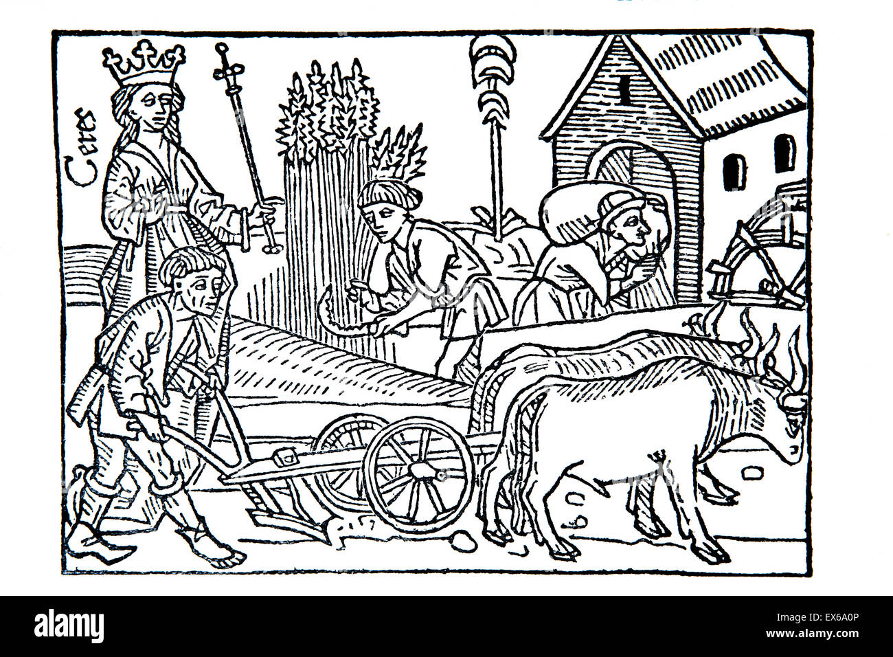 medieval harvest scene, woodcut from Boccaccio's de claris mulieribus (on famous women), published in Ulm 1473 - Stock Image