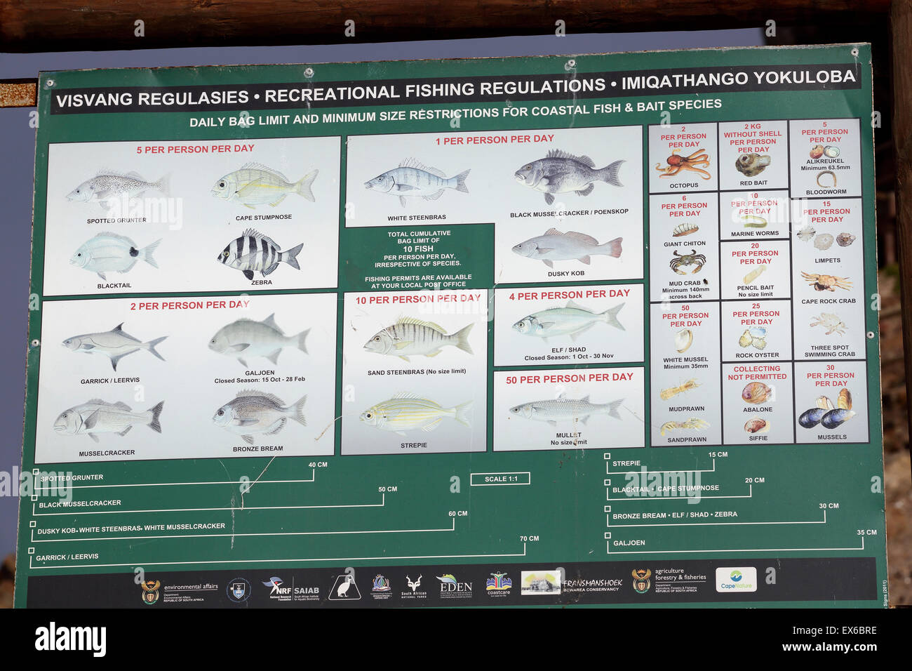 Public information board displaying recreational fishing regulations and daily quotas in Mossel Bay, South Africa - Stock Image