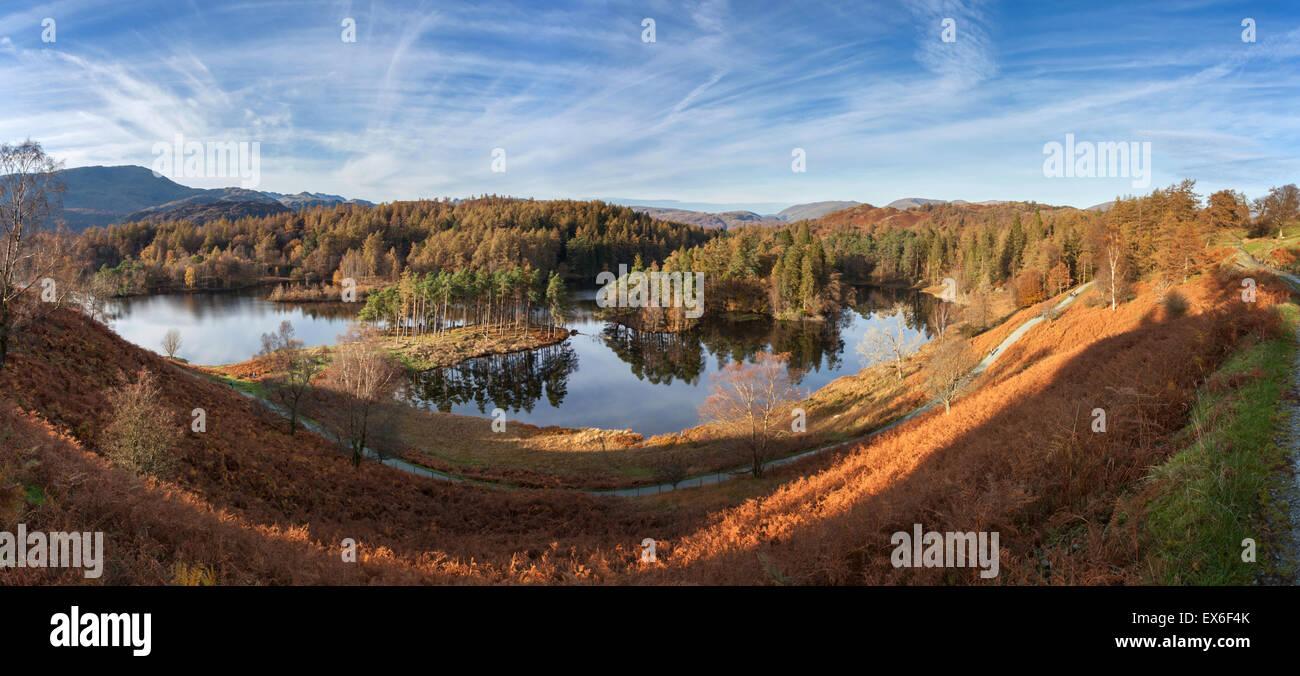 Tarn Hows autumn panorama Lake District UK - Stock Image