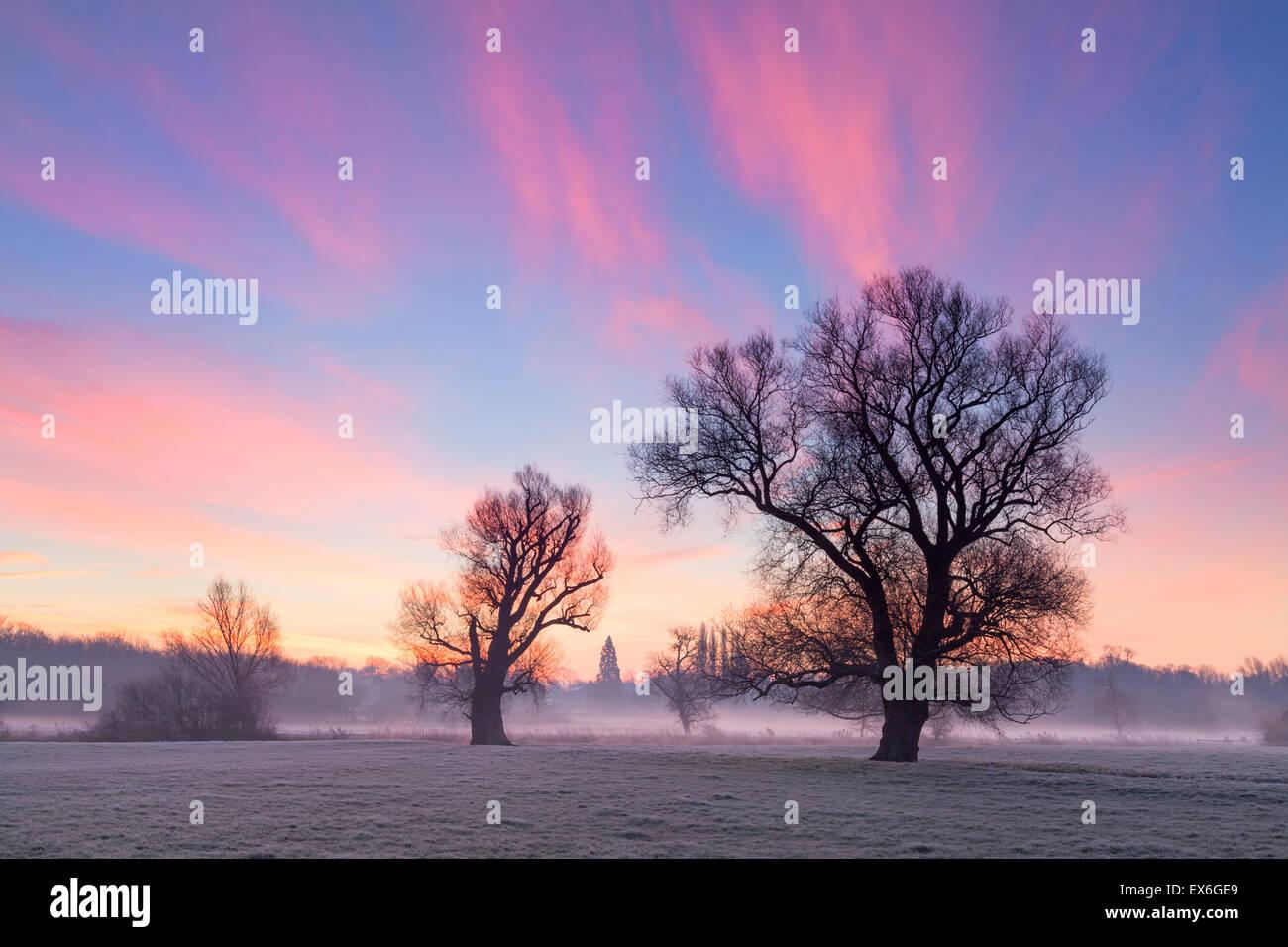 Striking sunrise Grantchester meadows Cambridge UK - Stock Image