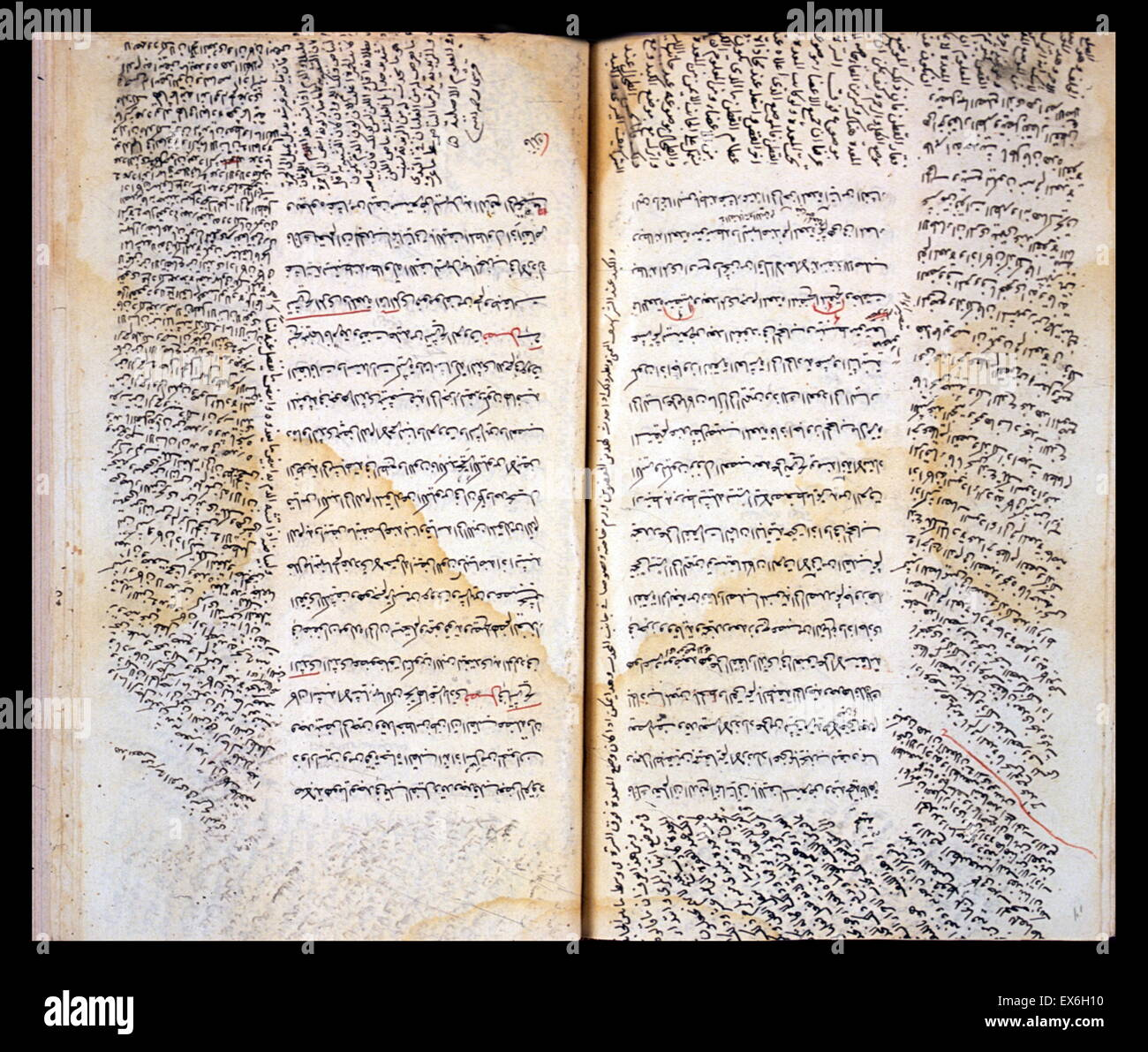 The central text consists of the anatomical sections of the Canon of Medicine by Ibn S?n? (Avicenna). In the margins - Stock Image