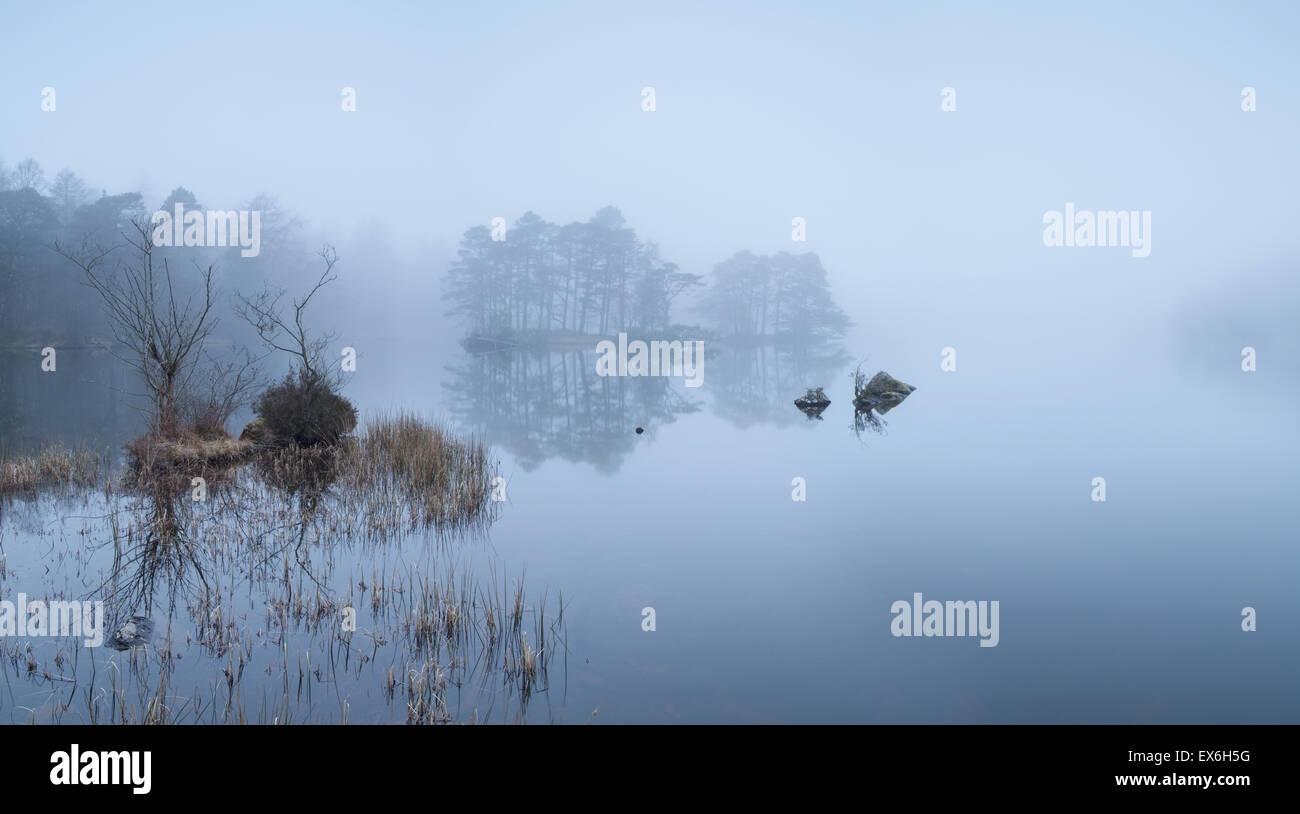 High Dam Finsthwaite in the mist Lake District, UK - Stock Image