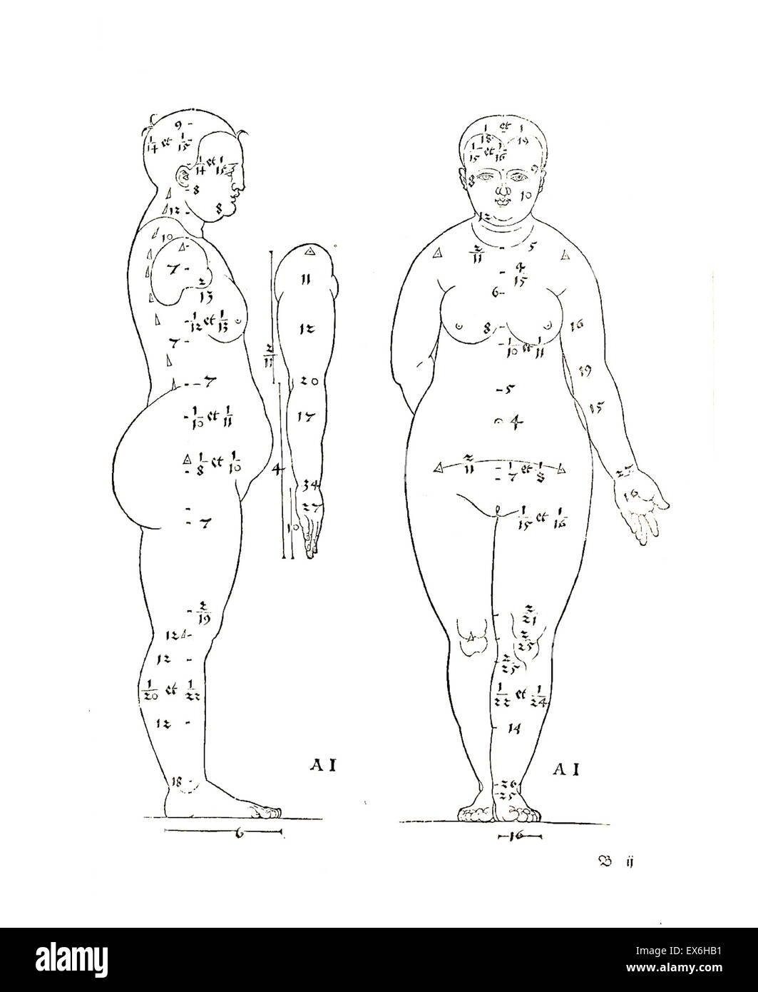 Anatomical illustration from 'Vier Bücher von menschlicher Proportion' ' by Albrecht Dürer - Stock Image