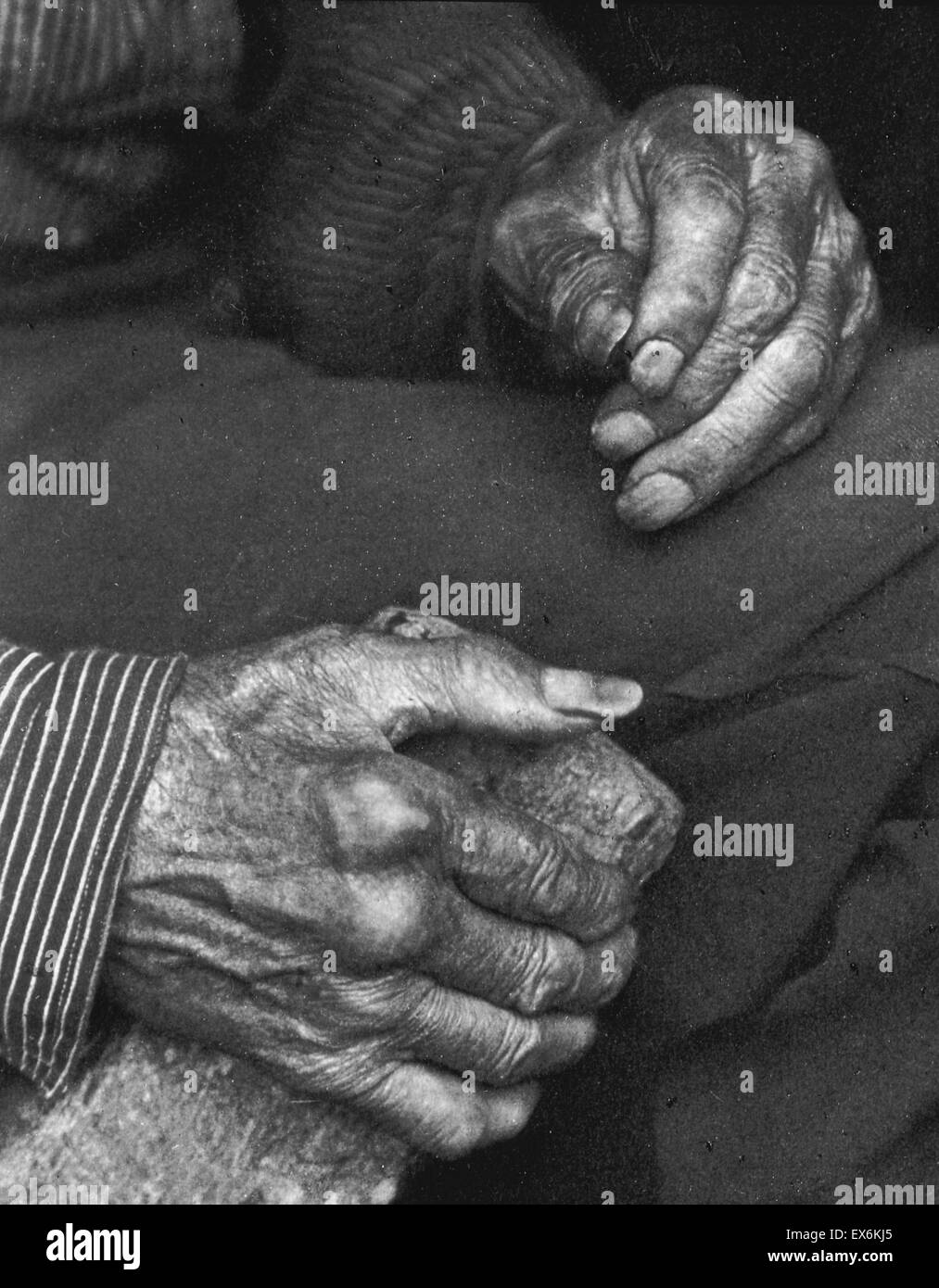 Black and white photograph of a labourer's hands. Created by Doris Ulmann (1882-1934) American photographer. - Stock Image