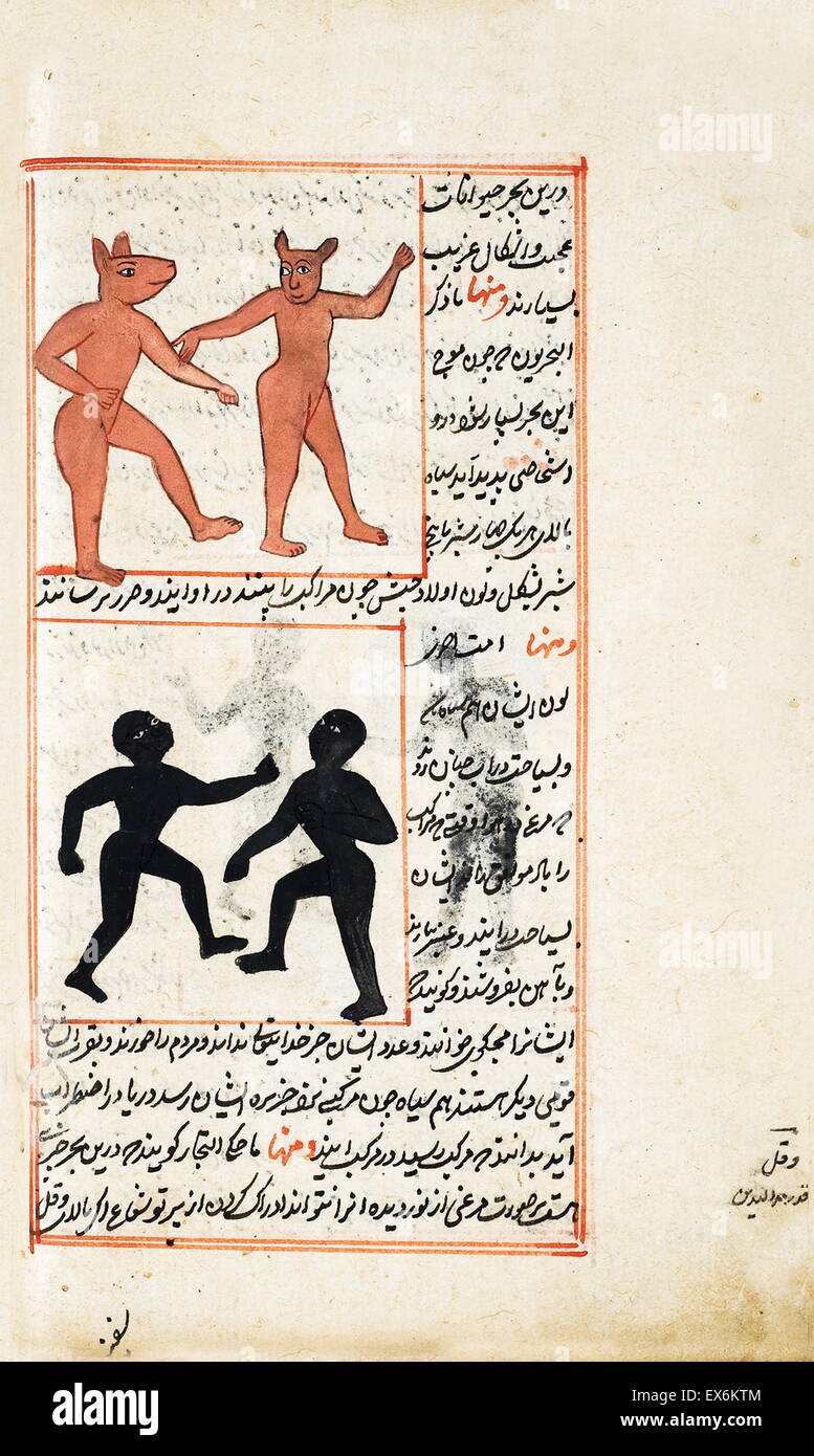 Illustration depicting Creatures from the island of Zaneh, from 1538 edition, of 'Kit?b-I ?aj?y?b al-makhl?q?t - Stock Image