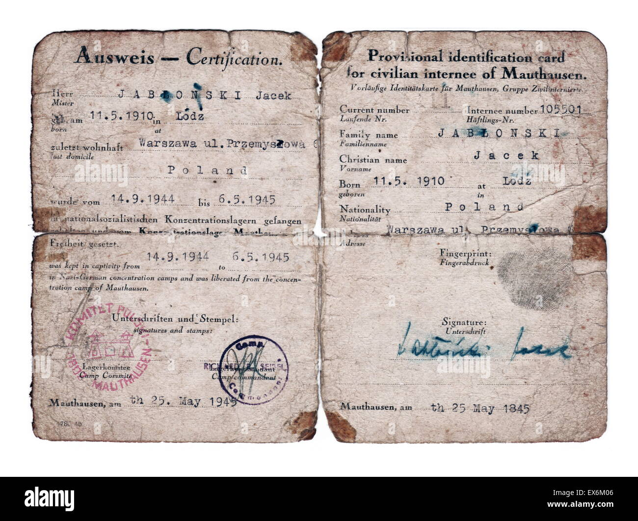 World War Two; Post-liberation identification paper for a former Mauthausen Concentration Camp prisoner called Jacek - Stock Image