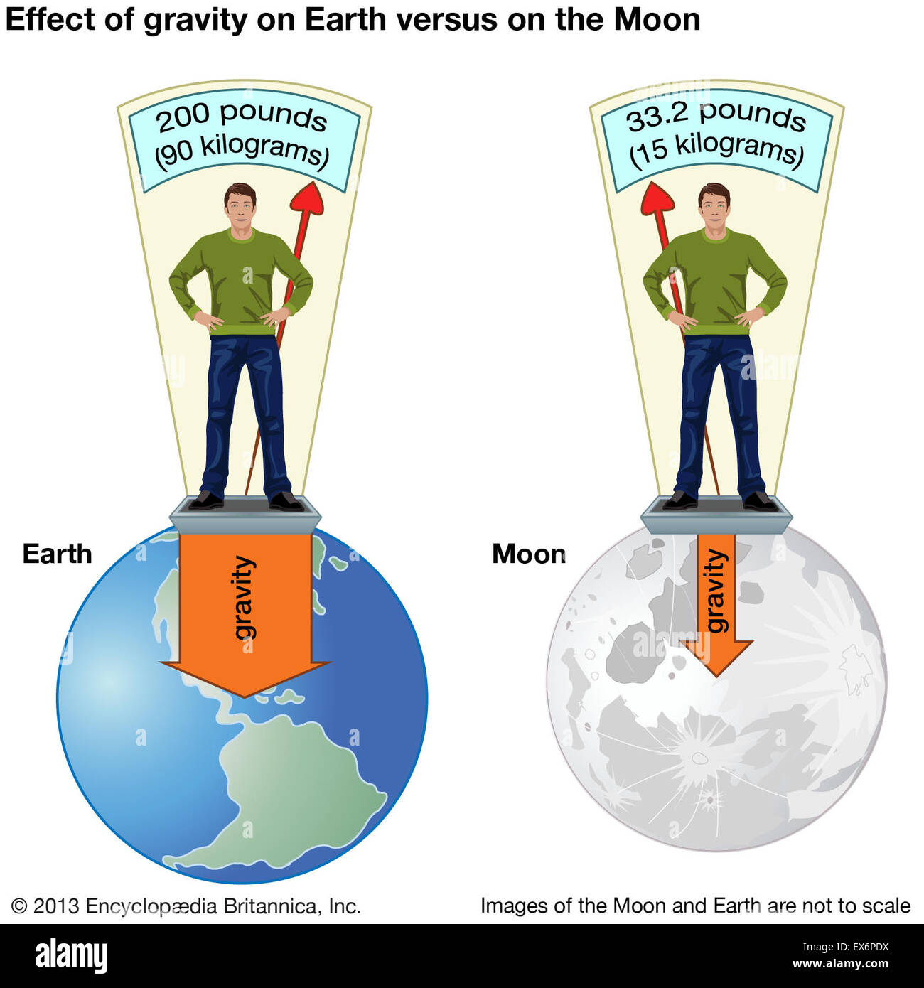 Effect of gravity on Earth versus on the Moon - Stock Image