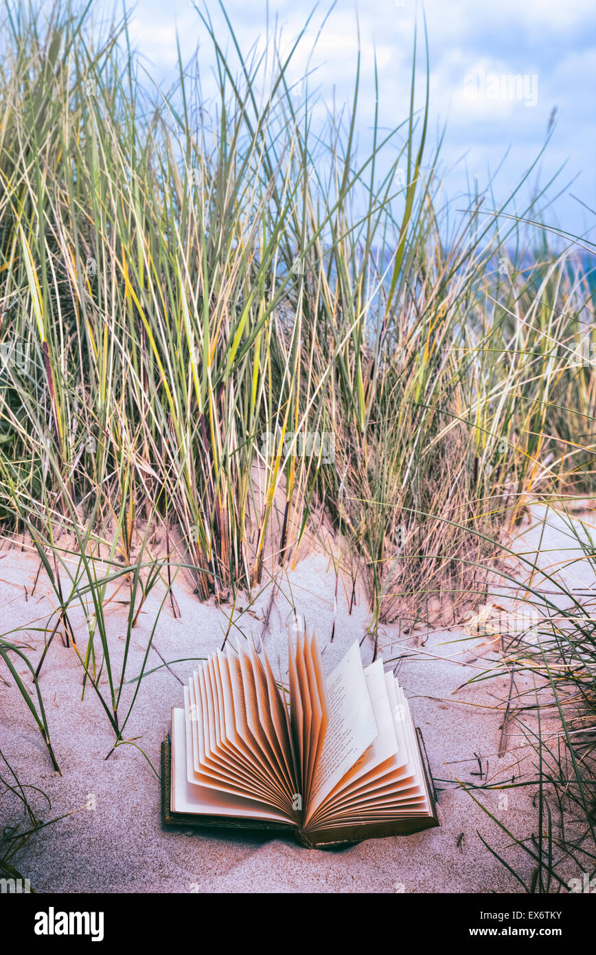 an old book is lying in the dunes on a beach - Stock Image