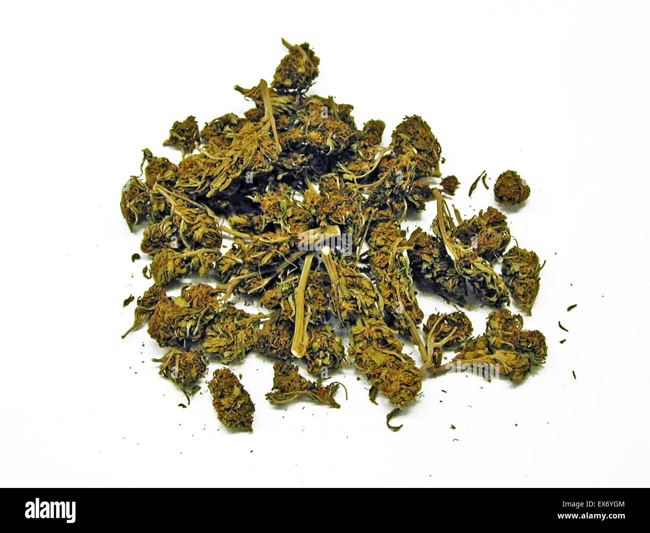 Cannabis, commonly known as marijuana is a psychoactive drug and as medicine, which can include heightened mood or euphoria, relaxation and as increase in appetite. Possible side-effects include a decrease in short-term memory, impaired motor skills and f Stock Photo